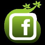Biesvelden op Facebook