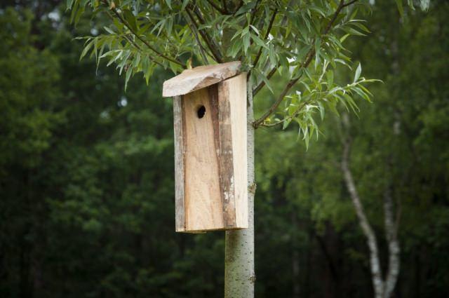 duurzaam nestkastje vogelhuisje gemaakt van restmateriaal