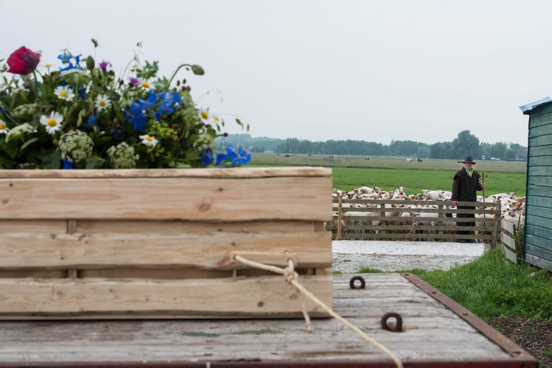 Natuurlijke kist word vervoerd op platte wagen